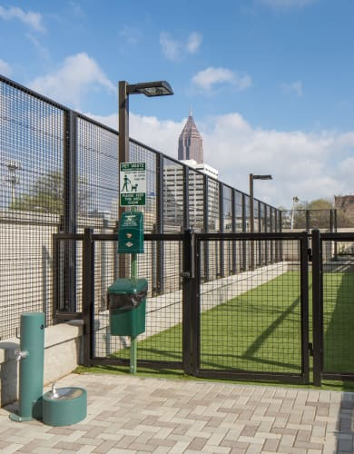 Off leash dog area at Altitude in Atlanta, GA
