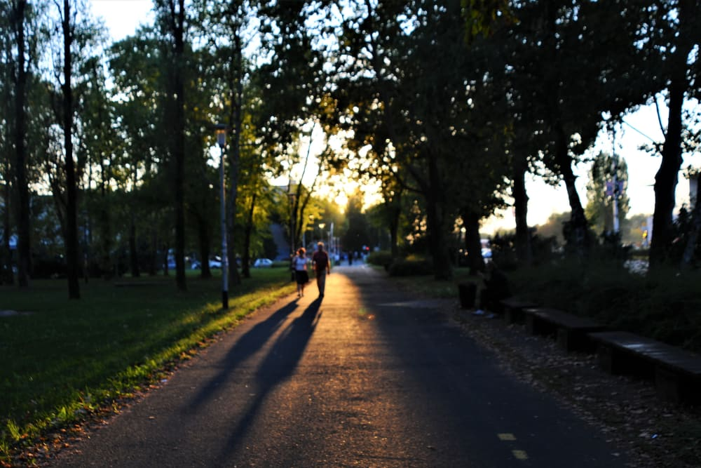 Couple going for a walk at sunset on a beautiful tree-lined street near Southtown Apartments in Monmouth, Oregon