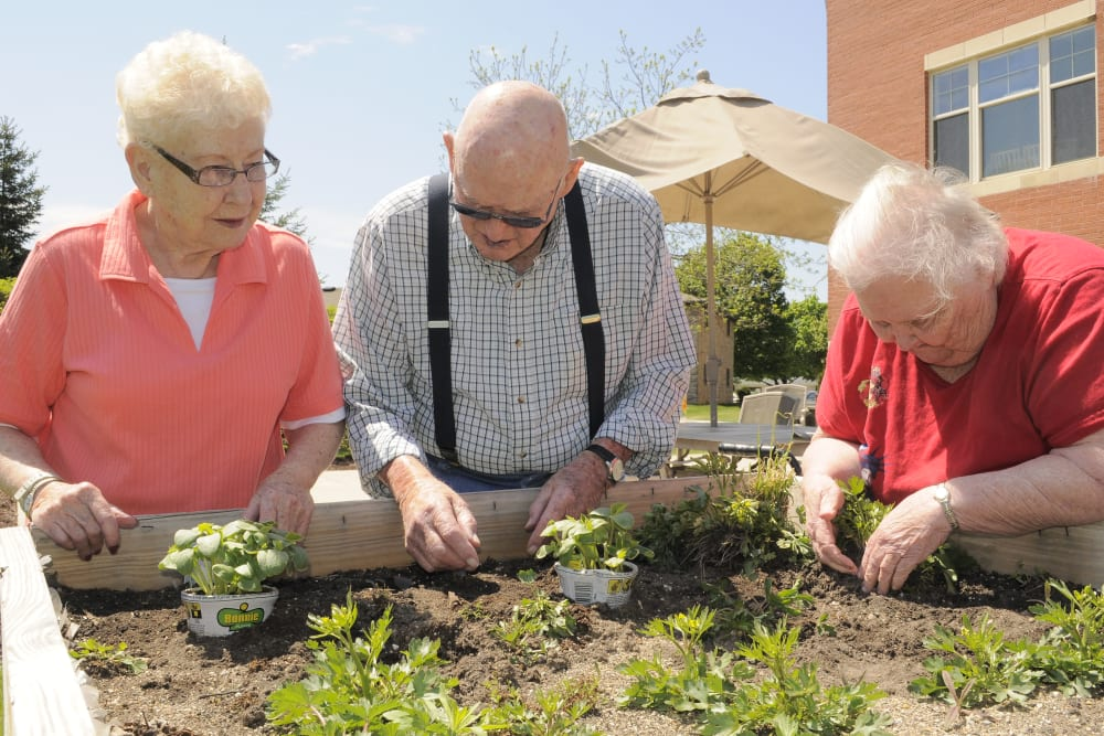 senior residents gardening