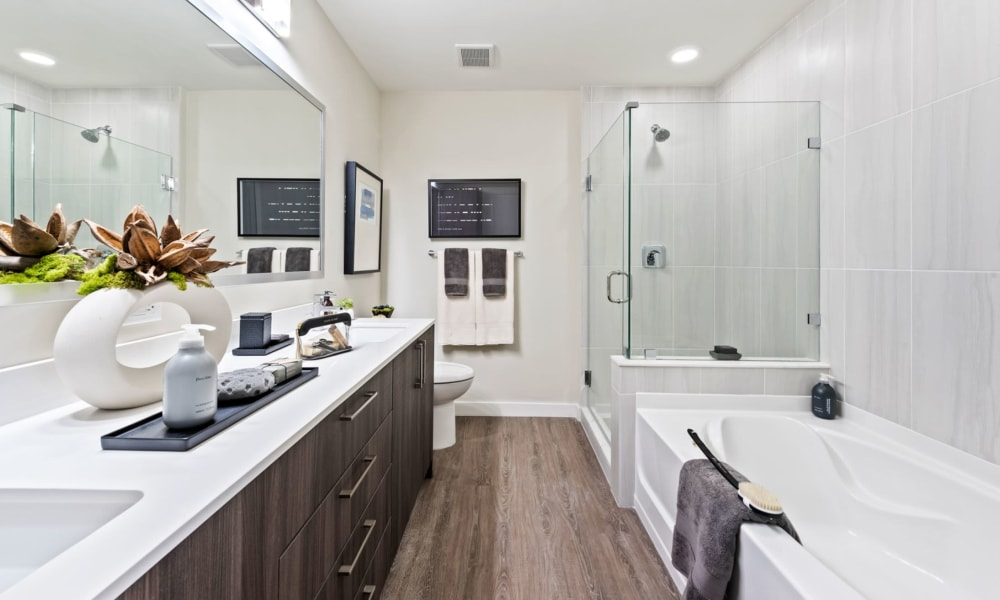 Modern bathroom with hardwood style flood and tons of counter space at 6600 Main in Miami Lakes, Florida