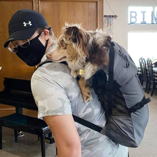 Resident dog at Canoe Brook Assisted Living in Ardmore, Oklahoma