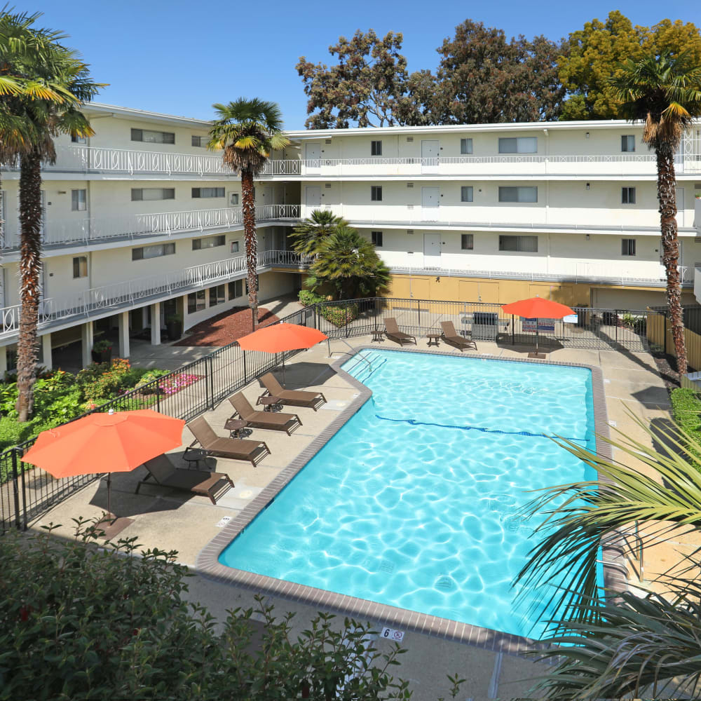 View of the resort-style swimming pool from an upper floor at Sofi Redwood Park in Redwood City, California