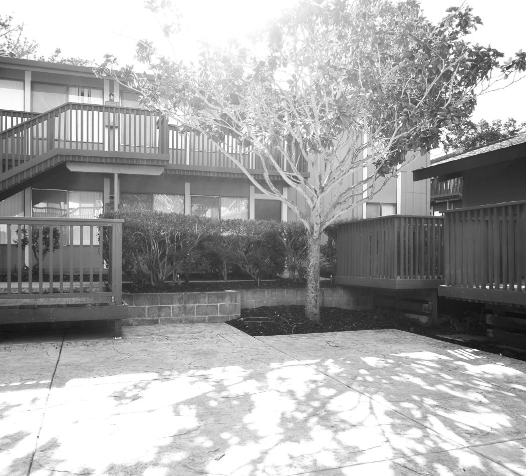 Community Amenities at Villa Ramona in Monterey, California