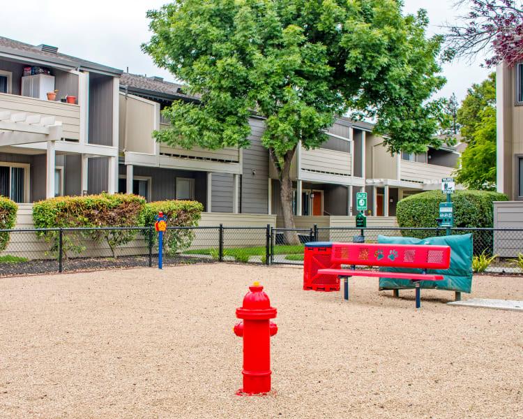 Onsite bark park at Sofi Dublin in Dublin, California