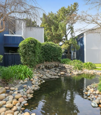 A beautiful creek running through the apartment complex at Ballena Village Apartment Homes in Alameda, California
