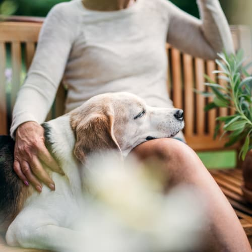 A resident and her canine friend relax on the porch at The Crossings at Eastchase in Montgomery, Alabama