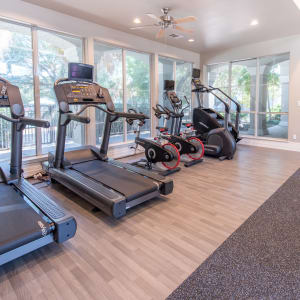 Features & Amenities at Lakeview at Parkside in Farmers Branch, Texas
