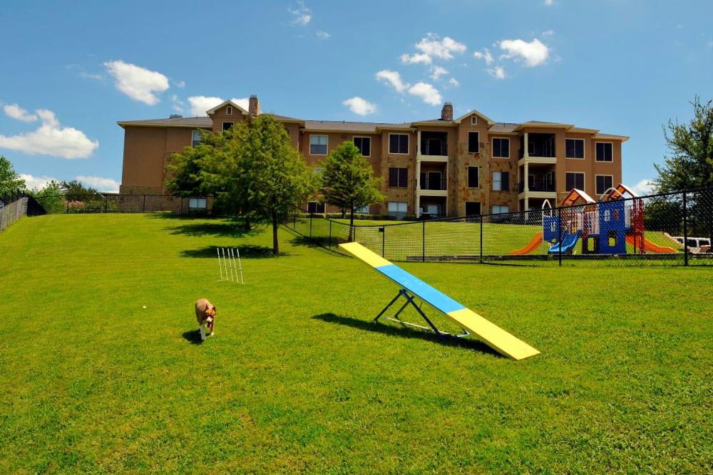 Enjoy Apartments with a Dog Park at El Lago Apartments