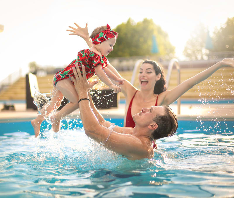 Resident family enjoying the swimming pool at Reserve at Pebble Creek in Plano, Texas