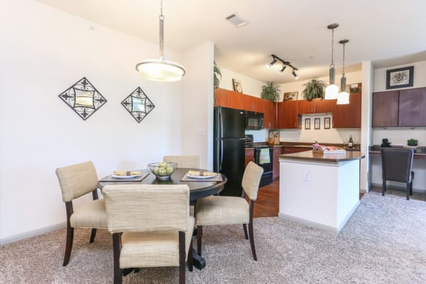 Apartment features and amenities at The Bridge at Tech Ridge