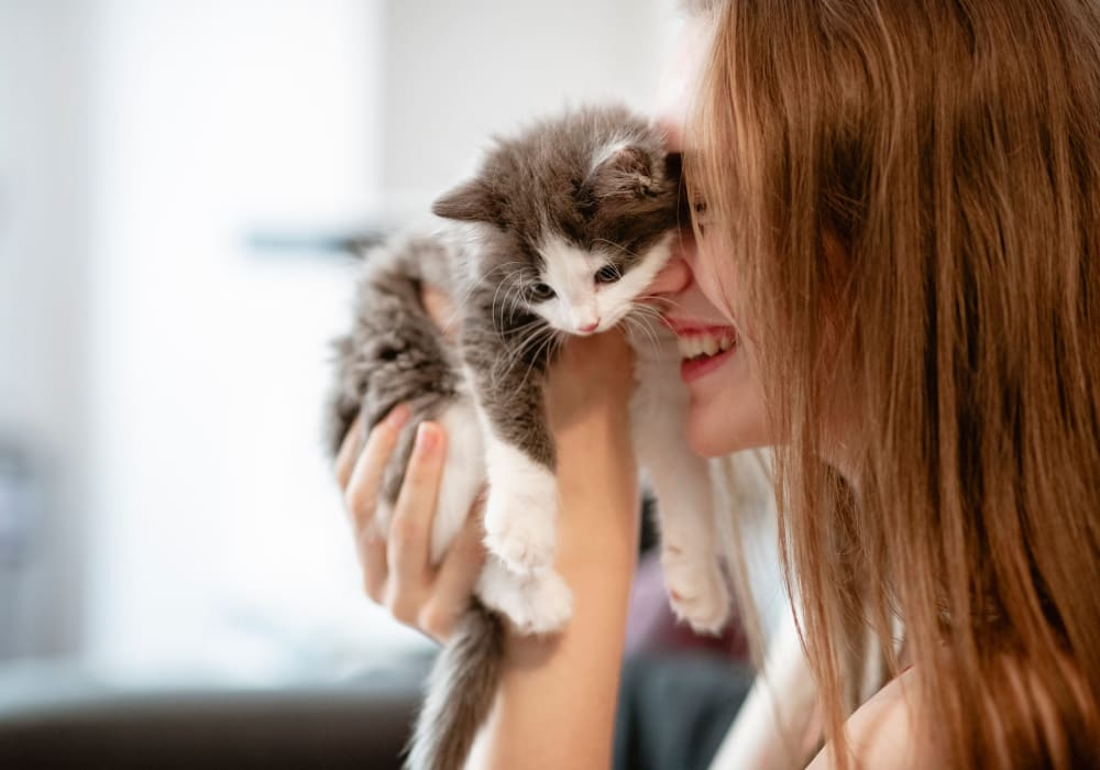 Resident and her kitten loving their new home at The Villa at Marina Harbor in Marina del Rey, California
