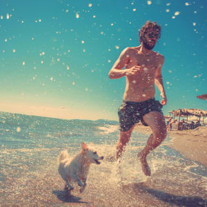 Man running on beach with his dog near Jefferson Westshore in Tampa, Florida