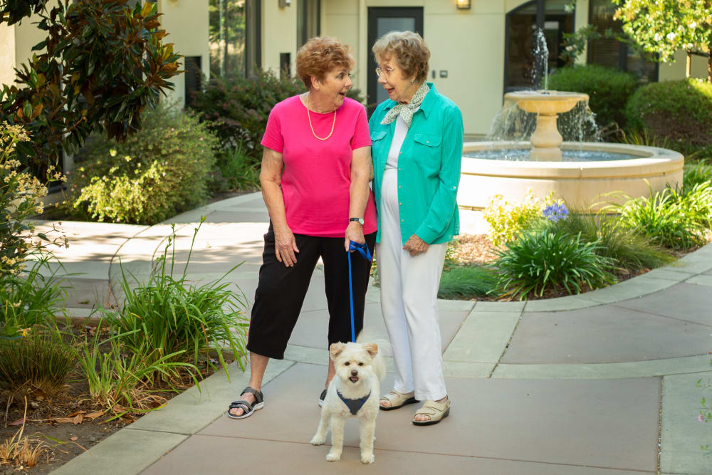Two ladies laughing with a pet dog in the courtyard at our senior living community in Campbell, CA