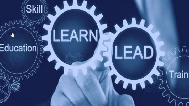 Learn/Lead image of gears