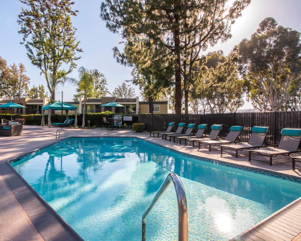 Sparkling swimming pool on another sunny morning at Sofi Poway in Poway, California