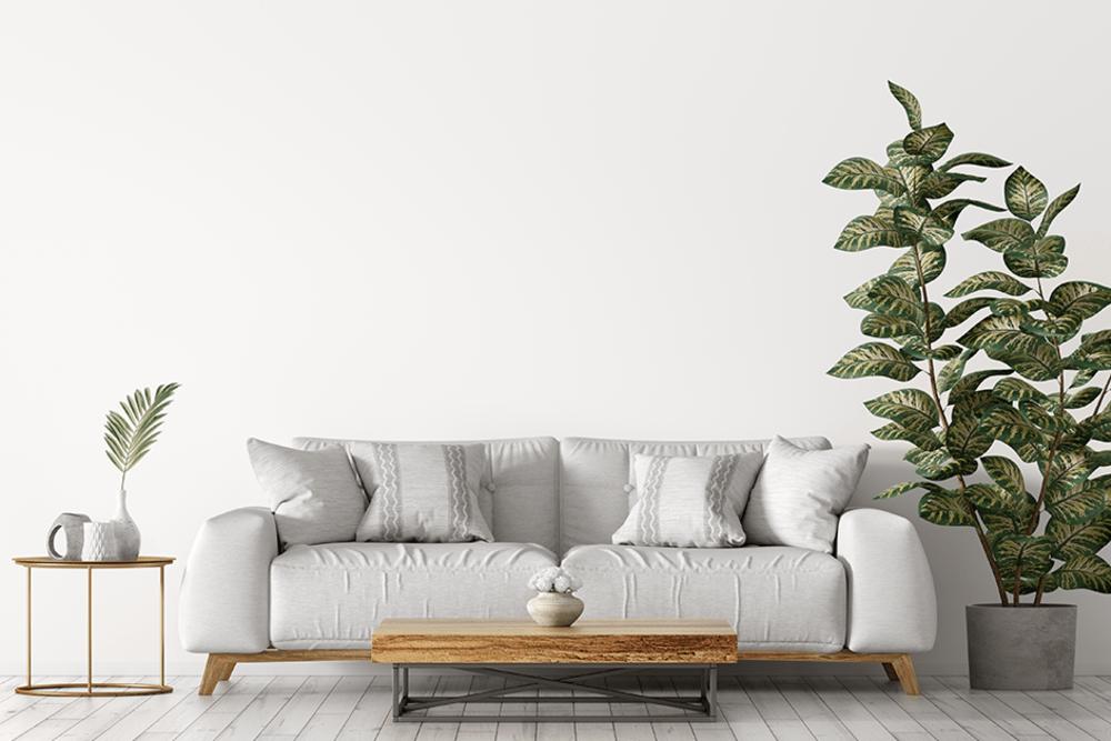 Case & Associates furnished living room