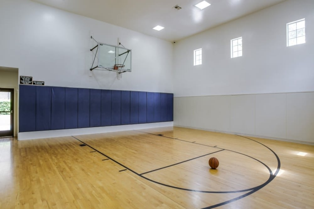 Enjoy our basketball court at Estates on Frankford in Dallas, Texas