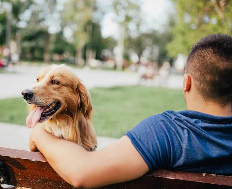 Dog sitting next to his owner on a bench near Sussex at Kingstowne in Alexandria, Virginia